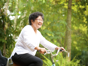 Bikingsenior